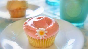 Magnoria-Cupcake-300x169
